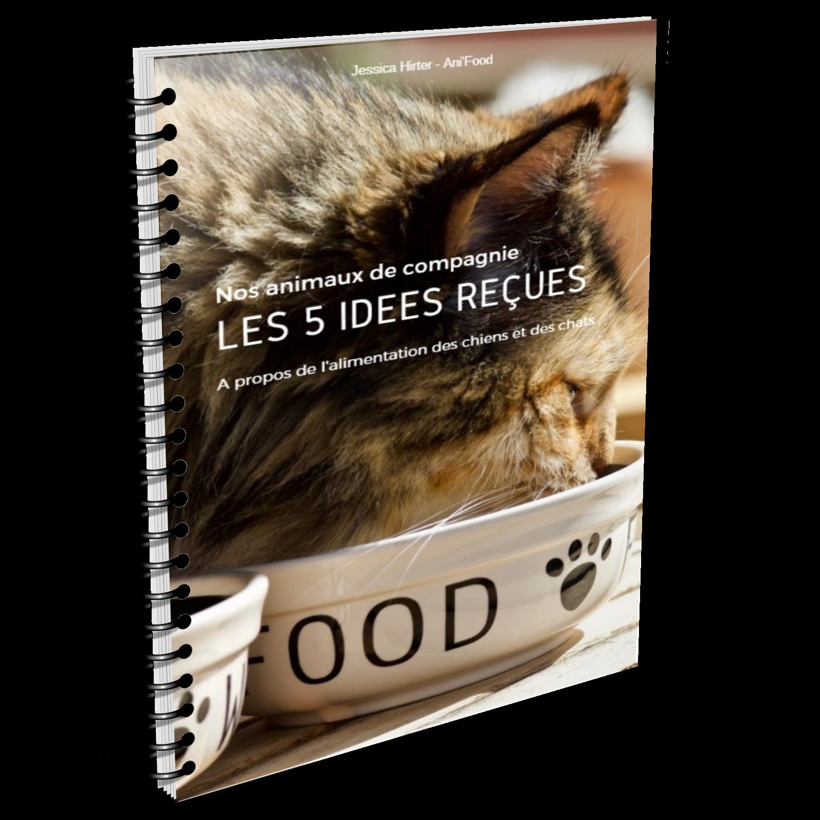 les 5 idées recues sur l'alimentation des chiens et des chats